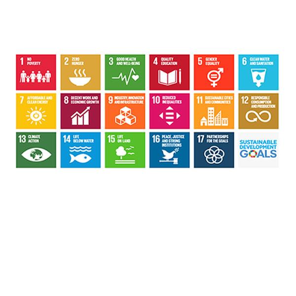 持続可能な社会を目指して